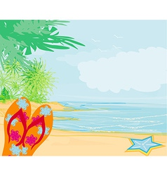 Flip-flops and seashell on the beach vector