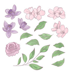 Flowers and leaves floral clip art vector