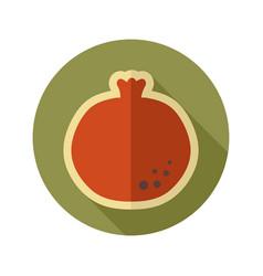Garnet flat icon fruit vector