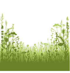 Herbal silhouette background vector