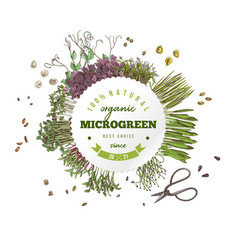 Individual label for fresh microgreen products vector