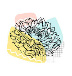 outline flower with colorful abstract backdrop vector image
