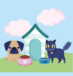 pet shop little dog and cat with bowls food and vector image