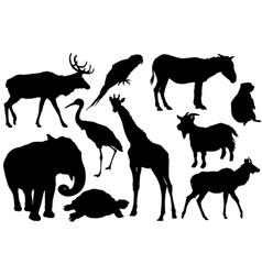 Set animal silhouettes vector