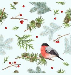 winter bullfinch pattern vector image