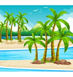 Beach view at daytime vector image
