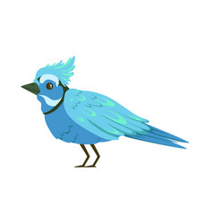 beautiful blue bird colorful vector image vector image