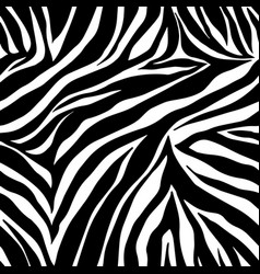animal print zebra ornament seamless vector image