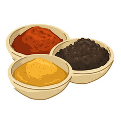Asian spices and seasoning food and meal powder vector