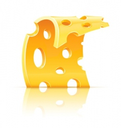cheese food holes vector image