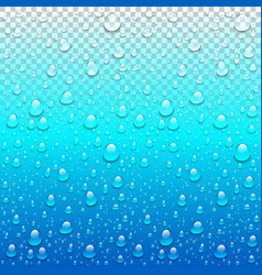 realistic water drops transparent blue background vector image