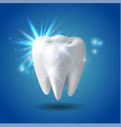 white shining tooth concept whitening human vector image
