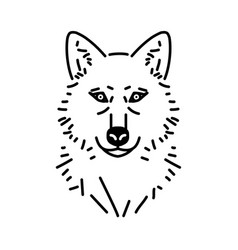 wolf head line drawing vector image