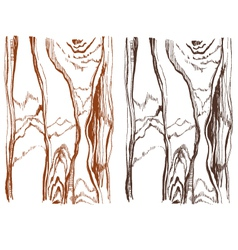 Wood structure isolated over background vector