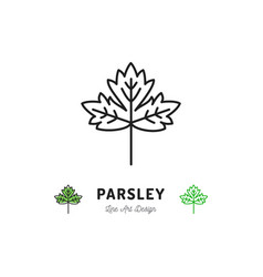 parsley leaf icon vegetables logo spice thin line vector image vector image