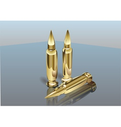 Bullets vector image vector image