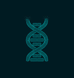 dotted dna vector image