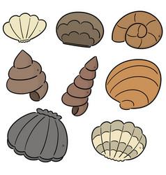 set of sea shell vector image