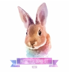 set watercolor cute vector image