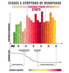 Stages of menopause infographic vector