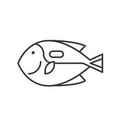 Surgeonfish icon set ocean life line design vector