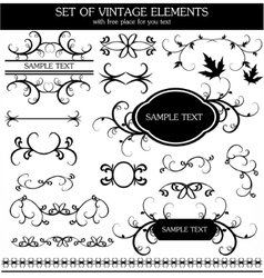 calligraphic vintage vector image