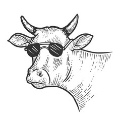 cow animal in sunglasses sketch engraving vector image