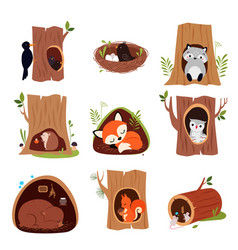 cute animals sitting in burrows and tree hollows vector image