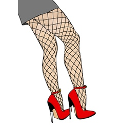 Legs and fishnet stockings vector image