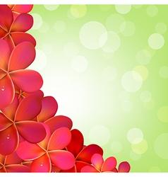 Pink frangipani frame with bokeh vector