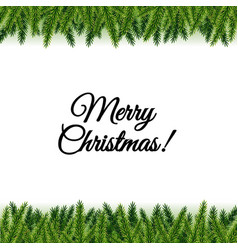 christmas postcard with tree branches vector image