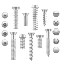 Realistic Screw Icon Set Different Shapes vector image