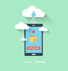 Cloud computing storage and applications on a vector