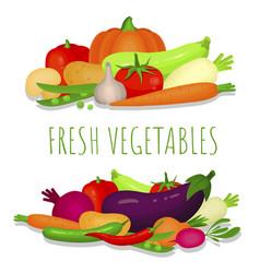 fresh vegetables banner poster ripe vegetarian vector image
