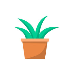 Green indoor plant in clay pot for office decor vector