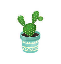 Opuntia houseplant cactus green potted plant vector