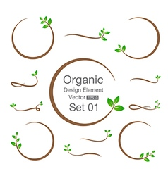 Organic design element isolated on the background vector image