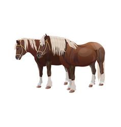 Pair of draft horses vector