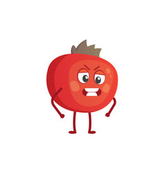 with funny pomegranate vector image