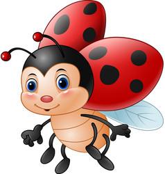 cartoon funny ladybug vector image