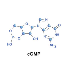 Cyclic guanosine monophosphate vector