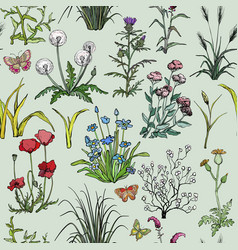 Seamless pattern with hand drawn field herbs vector