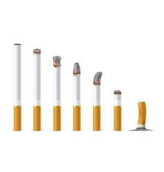 smoldering cigarette in a line set realistic vector image