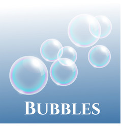 transparent soap bubbles with reflection vector image