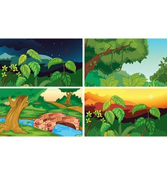 Forests vector image vector image