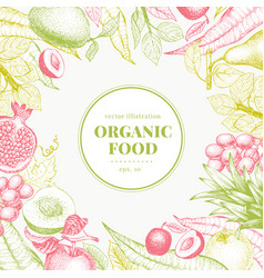 fruits hand drawn background banner vector image