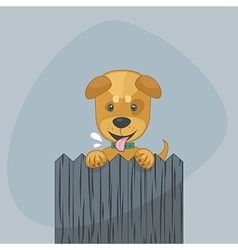 Happy Puppy vector image