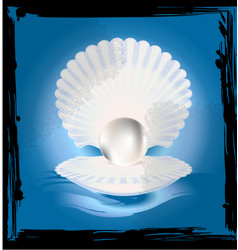 abstract image of shell vector image