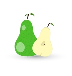 Green sliced pears with leaf vector
