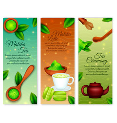 matcha vertical banners vector image